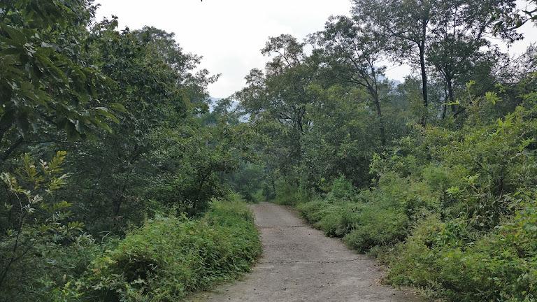 通往福兴寺的山路